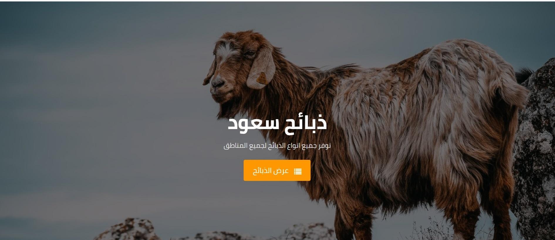 Zabayah Saud | Sheeps Online Store WP